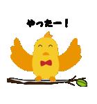 幸せを呼ぶ鳥の冬生活(個別スタンプ:31)