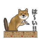柴っちⅡ(個別スタンプ:4)