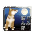 柴っちⅡ(個別スタンプ:6)