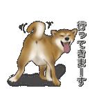 柴っちⅡ(個別スタンプ:9)