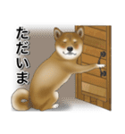 柴っちⅡ(個別スタンプ:10)