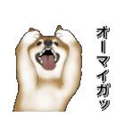 柴っちⅡ(個別スタンプ:23)