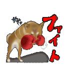 柴っちⅡ(個別スタンプ:26)