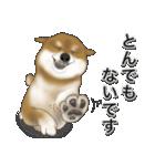 柴っちⅡ(個別スタンプ:30)