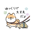 気づかう犬(個別スタンプ:30)
