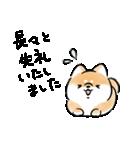 気づかう犬(個別スタンプ:31)