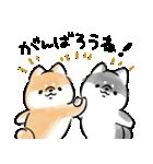 気づかう犬(個別スタンプ:35)