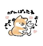 気づかう犬(個別スタンプ:36)