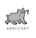 灰色猫さん(個別スタンプ:22)