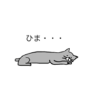 灰色猫さん(個別スタンプ:24)