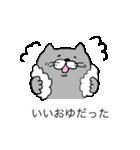 灰色猫さん