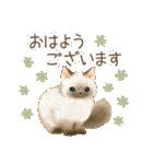 使いやすい☆猫たちのスタンプ(個別スタンプ:01)