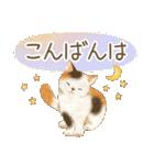 使いやすい☆猫たちのスタンプ(個別スタンプ:03)