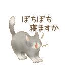 使いやすい☆猫たちのスタンプ(個別スタンプ:04)
