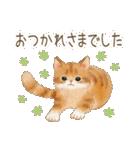 使いやすい☆猫たちのスタンプ(個別スタンプ:08)