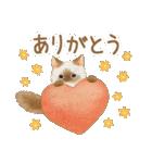 使いやすい☆猫たちのスタンプ(個別スタンプ:13)