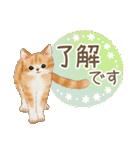 使いやすい☆猫たちのスタンプ(個別スタンプ:19)