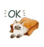 使いやすい☆猫たちのスタンプ(個別スタンプ:20)
