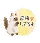 使いやすい☆猫たちのスタンプ(個別スタンプ:22)