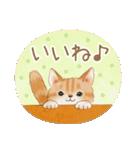 使いやすい☆猫たちのスタンプ(個別スタンプ:23)