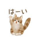 使いやすい☆猫たちのスタンプ(個別スタンプ:24)