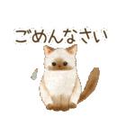使いやすい☆猫たちのスタンプ(個別スタンプ:25)