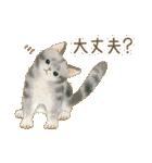 使いやすい☆猫たちのスタンプ(個別スタンプ:26)