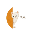使いやすい☆猫たちのスタンプ(個別スタンプ:33)