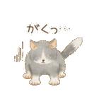 使いやすい☆猫たちのスタンプ(個別スタンプ:35)