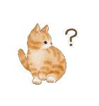 使いやすい☆猫たちのスタンプ(個別スタンプ:37)