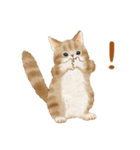 使いやすい☆猫たちのスタンプ(個別スタンプ:38)