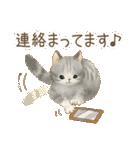 使いやすい☆猫たちのスタンプ(個別スタンプ:39)