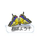 スマホの上の虹色蝶《Movie 04》(個別スタンプ:01)