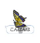スマホの上の虹色蝶《Movie 04》(個別スタンプ:03)