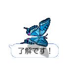 スマホの上の虹色蝶《Movie 04》(個別スタンプ:06)