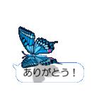 スマホの上の虹色蝶《Movie 04》(個別スタンプ:07)