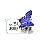 スマホの上の虹色蝶《Movie 04》(個別スタンプ:13)
