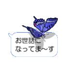 スマホの上の虹色蝶《Movie 04》(個別スタンプ:15)