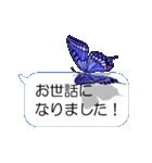 スマホの上の虹色蝶《Movie 04》(個別スタンプ:16)