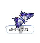 スマホの上の虹色蝶《Movie 04》(個別スタンプ:20)