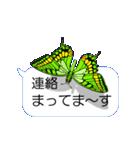 スマホの上の虹色蝶《Movie 04》(個別スタンプ:23)
