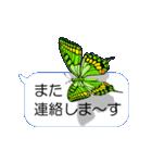 スマホの上の虹色蝶《Movie 04》(個別スタンプ:24)
