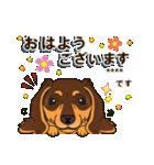 気軽にダックス(チョコタン)【カスタム】(個別スタンプ:02)