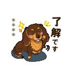 気軽にダックス(チョコタン)【カスタム】(個別スタンプ:06)