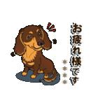 気軽にダックス(チョコタン)【カスタム】(個別スタンプ:09)