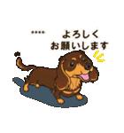 気軽にダックス(チョコタン)【カスタム】(個別スタンプ:11)