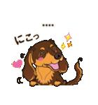 気軽にダックス(チョコタン)【カスタム】(個別スタンプ:18)