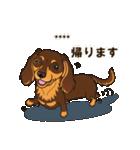 気軽にダックス(チョコタン)【カスタム】(個別スタンプ:20)