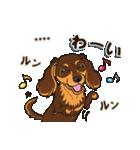 気軽にダックス(チョコタン)【カスタム】(個別スタンプ:24)