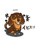 気軽にダックス(チョコタン)【カスタム】(個別スタンプ:26)